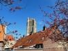 FillWzc4MCw0ODBd-Foto-Roel-van-Deursen-Opgravingen-Brielle-2016-04-21-16